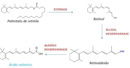 redermicR5+conversão+tretinoina